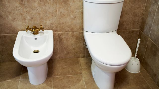 Learning the Lingo: Bidets, Floating Vanities, and Other Bathroom ...