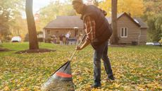 7 Yard Maintenance Must-Haves for New Homeowners
