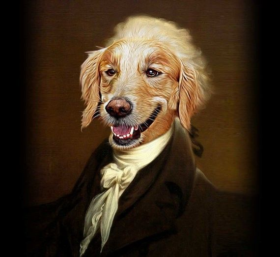 Alexander Hamildog is young, scrappy, and hungry.