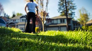 I Hate Having a Yard (and Guess What, You Might Too)