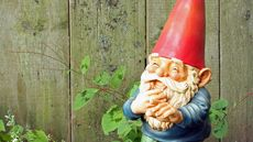 Tackiest Lawn Decor Ever, From Stripper Gnomes to Randy Turtles