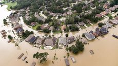 Hurricanes Like Harvey and Irma Devastate Lives. Do They Forever Damage Property Values Too?