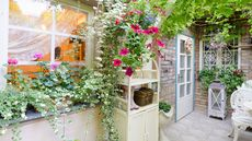 From Desert Vibes to Romantic Allure, Ways to Refresh Your Porch With Plants