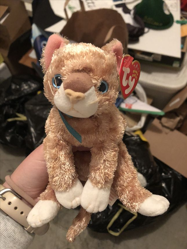 The Beanie Babies toy I got from a friend in elementary school, with the tag still attached, could be worth a fortune now, right?