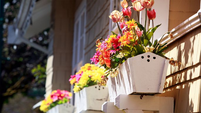 window-boxes-staging