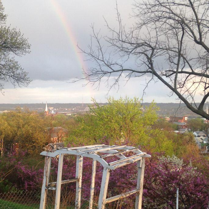 Rainbow over the new vineyard