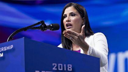 NRA Spokeswoman Dana Loesch Sells Her Former Southlake, TX, Home