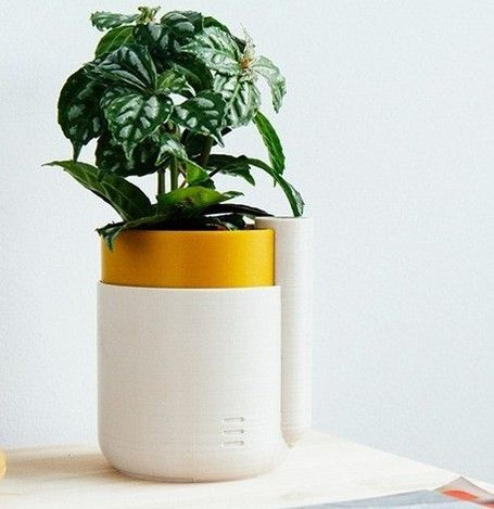 You can't print your own plant just yet.