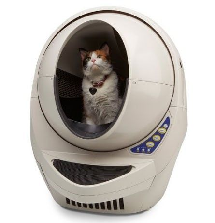 You can tell this cat loves its litter-robot.