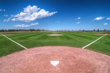 Opening Day Lineup: Five Major League Homes with Baseball Diamonds (PHOTOS)