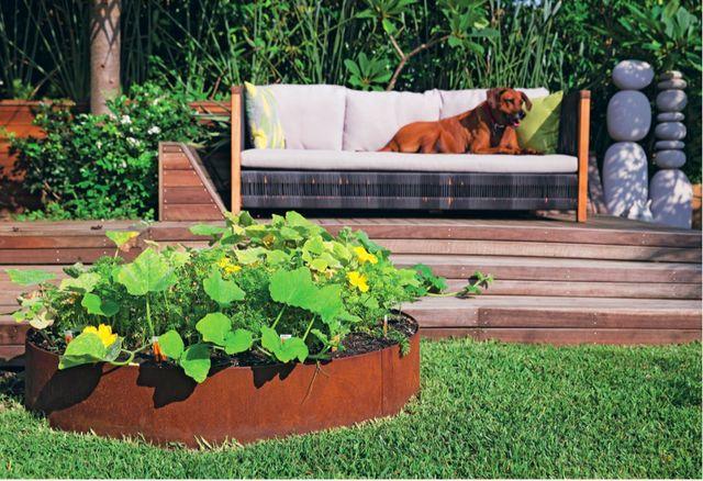 Hgtv 39 s jamie durie gives tips for an edible garden for Xd garden design