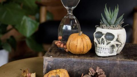 Get in the Spirit! The Best Halloween Decor You Can Buy Online Right Now
