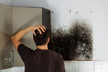 Is Mold in Your Home Putting Your Health at Risk?
