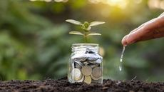 Is Gardening Digging a Hole in Your Wallet? 7 Money-Saving Tricks To Try