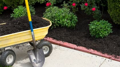 Want Free Mulch for Your Garden? Here's Where to Find It