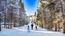 Sweet Slopes, Cheap Homes! Live in One of America's 10 Most Affordable Ski Towns