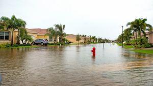 Swamped by Losses, U.S. Flood Insurance Program Faces a Deadline