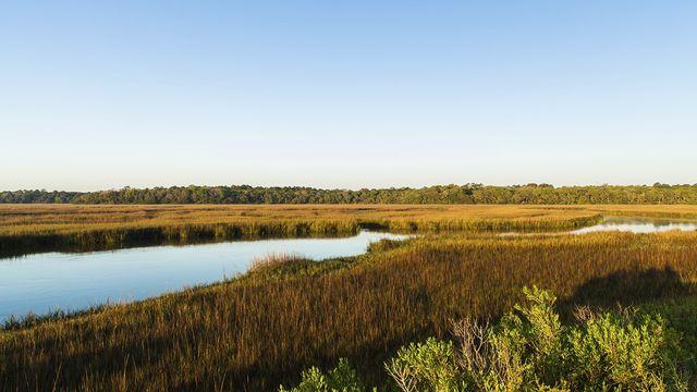 Nature preserve in Jacksonville