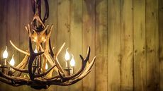 10 Types of Chandeliers for Your Love Nest, From Rustic to Romantic