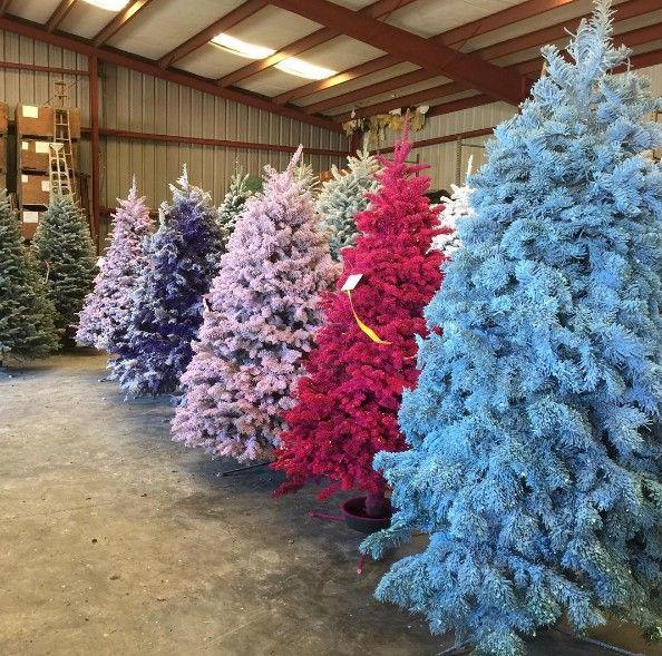 colorful christmas trees - Colorful Christmas Trees