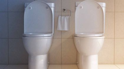 1 Bathroom, 2 Toilets: Will This Odd Upgrade Catch On?