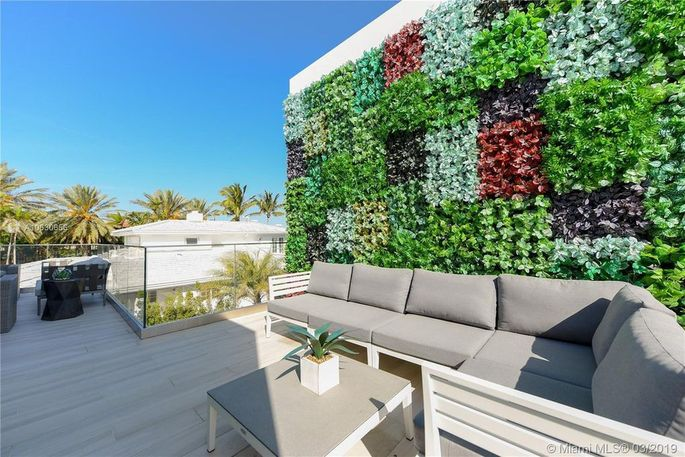 Rooftop terrace and living wall