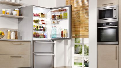 How Long Do Refrigerators Last? The Life Span of Kitchen Appliances