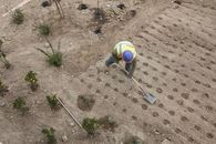 As California Drought Drags On, Home Builders Vie for a Voice