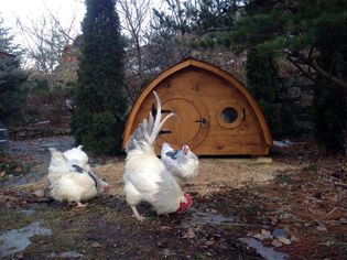 High-Low: 9 High-Design Chicken Coops So Your Backyard Birds Can Roost in Style