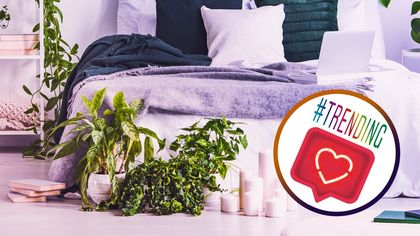 Forget the Groundhog! Spring Has Sprung in the Bedroom With Instagram's Hottest Decor Trends