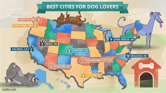 Best cities for dog lovers