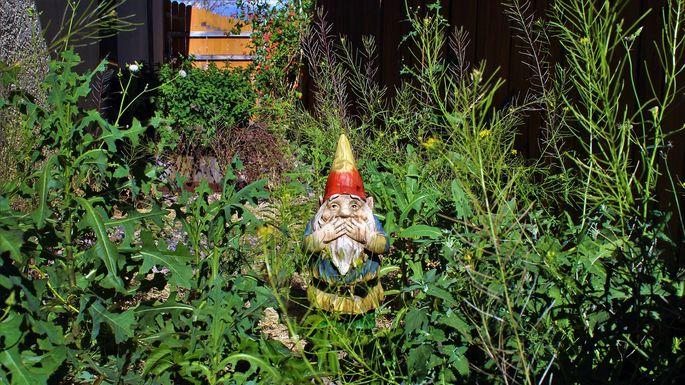 bad-landscaping-neighbors