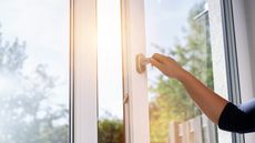 Take Advantage of Free Disinfectants: How To Fill Your Home With Sunlight and Fresh Air