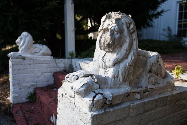 Lion statues on the front steps of Soundview Manor.