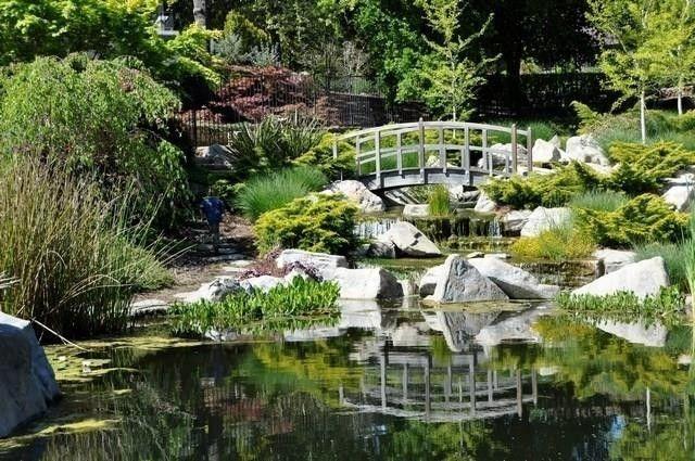 Monet-like garden