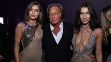 Gigi and Bella's Dad, Mohamed Hadid, Ordered to Tear Down Megamansion