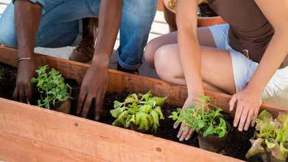 No Yard? No Problem! 5 Ways to Grow a Gorgeous Garden in a Tiny Space