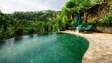 Ready to Dive Into the Natural Swimming Pool Trend? Here's How