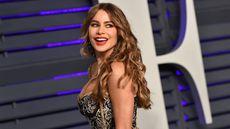 Rent Sofia Vergara's Fab Los Angeles Condo for $10,200 a Month