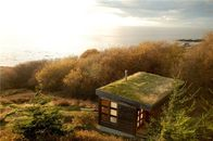 You Can Watch Whales From This San Juan Island Cottage With a Living Roof