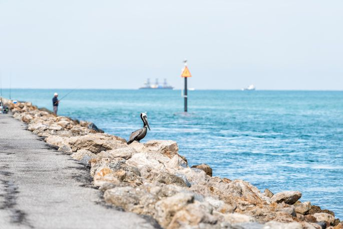 Venice, FL, pier