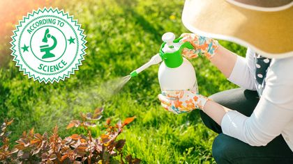 6 Organic Lawn Care Myths That Could Be Destroying Your Yard
