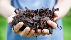DIY Landscapers: Don't Make These 6 Mistakes When Using Mulch in Your Yard