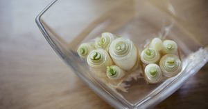 20 Cool Ways To Upcycle Food Scraps You Typically Toss in the Trash