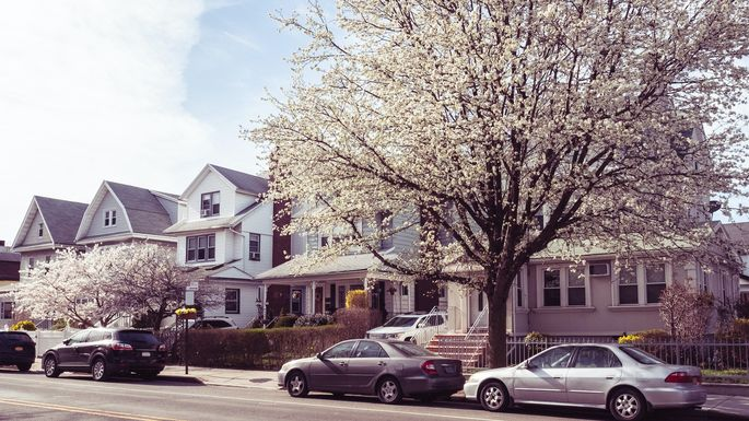 Springtime Brooklyn Street and Houses