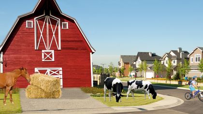 Seeds of a New Community: Farm Living Takes Root in the Suburbs