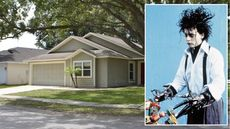 4 Fun Facts About the 'Edward Scissorhands' Home for Sale in Florida