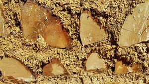 What Is a Hempcrete House—and Will It Get You High?