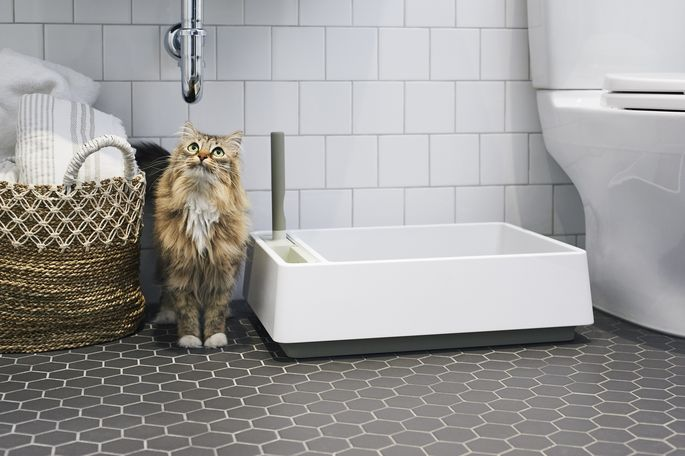 The Cove litter box features a simple design, with an integrated scoop, hand brush, and dustpan.