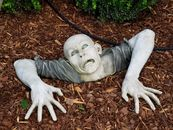 What Neighbors Are Complaining About Now: Zombies